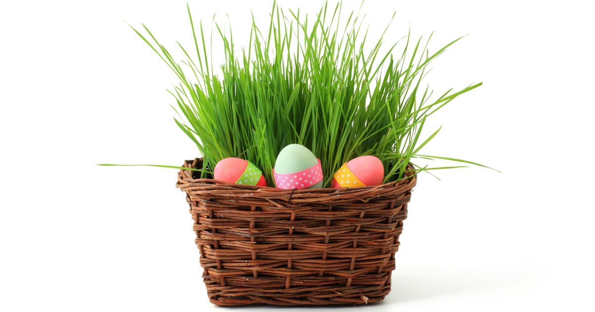 The best easter basket ideas for 1 year old boys mba sahm negle Images