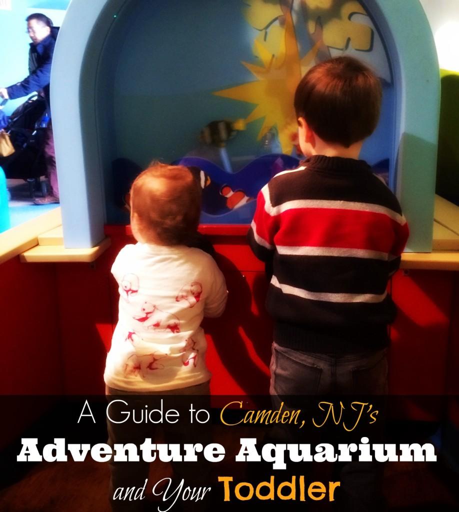 The Kid Zone at Adventure Aquarium Camden NJ
