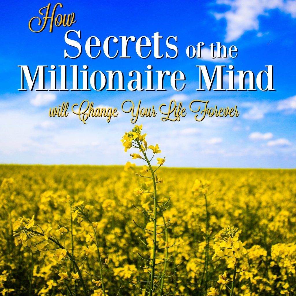 Secrets of the Millionaire Mind is one of the greatest inspirational books I've ever read. It's a total game-changer!