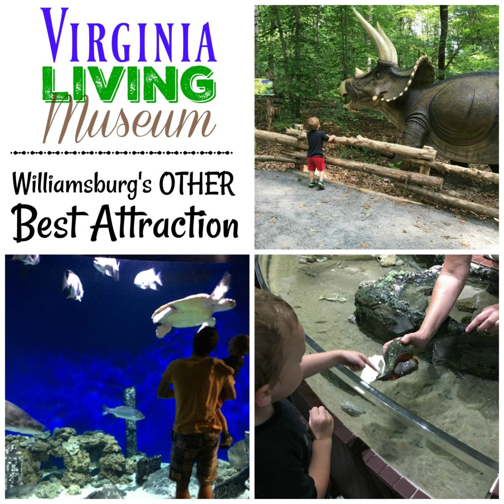 The Virginia Living Museum is one of the best places to take a preschooler in Williamsburg, VA! It's an amazing children's museum with tons of interactive activities.