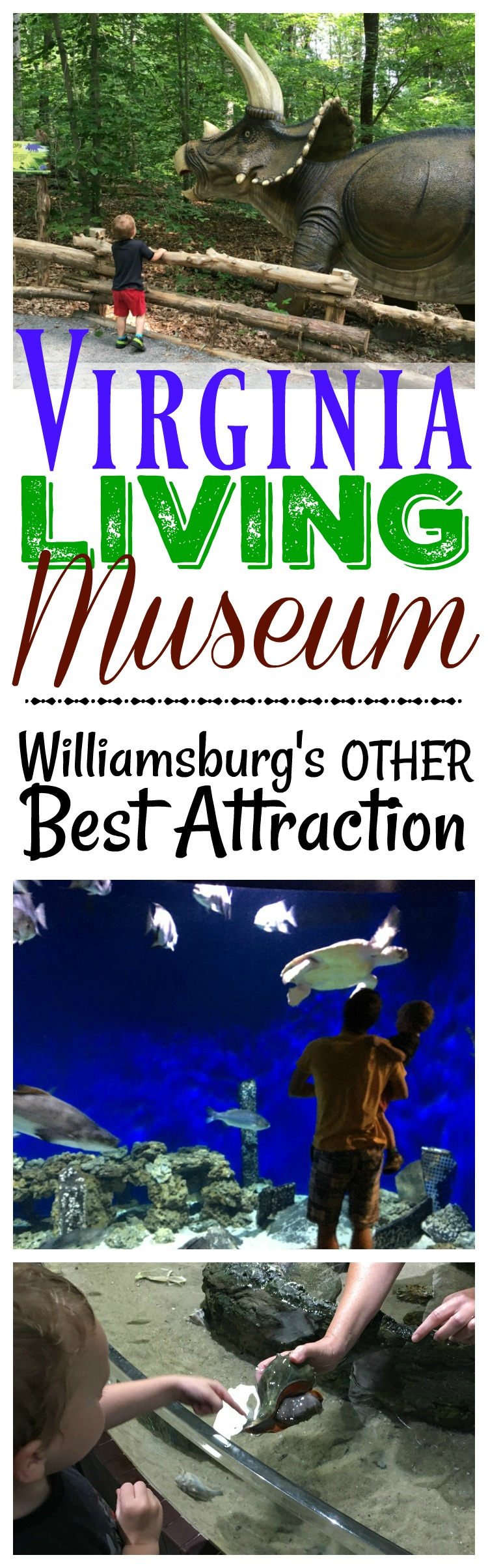 The Virginia Living Museum was definitely one of the best places to take a toddler in Williamsburg, VA! With air conditioning and outdoor exhibits, you can't go wrong!